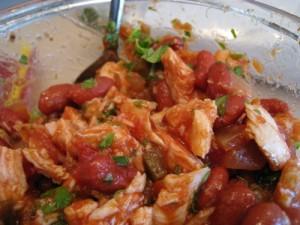 Turkey and salsa