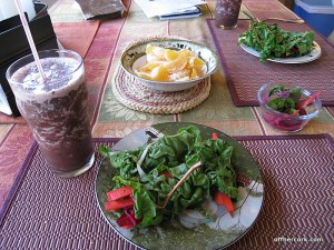 Smoothie, chard spring rolls, minneolas