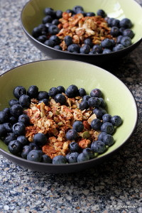 grain free granola and blueberries